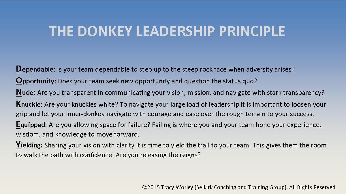 Donkey Leadership